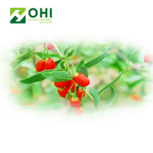 Goji Berry สารสกัด Polysacharides Powdert